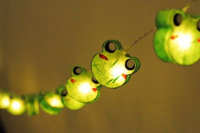 frog themed string lights