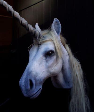 unicorn trophy head realistic